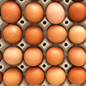 jaja slobodnih koka iz slobodnog uzgoja